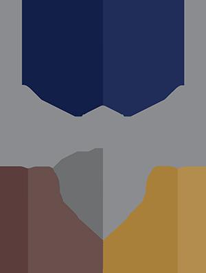 Setor Empresas Familiares